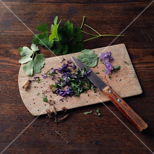 Columbine, chopped on a wooden board (for making columbine honey à la Hildegard von Bingen)