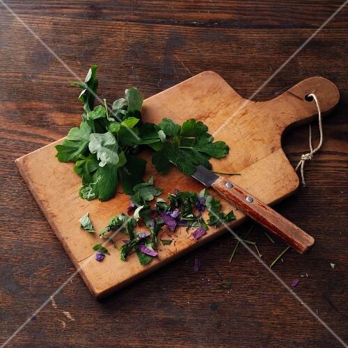 Columbine, chopped on a wooden board (for making columbine wine à la Hildegard von Bingen)