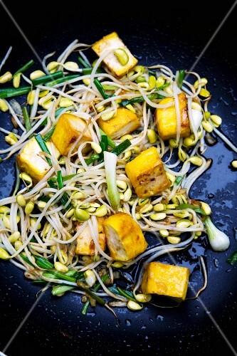 Pad Tua Ngog Sai Tahu (tofu with bean sprouts, Thailand)