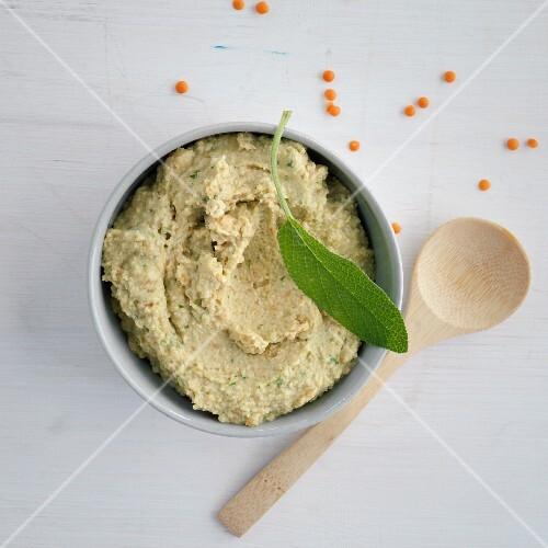 Lentil cream with sage