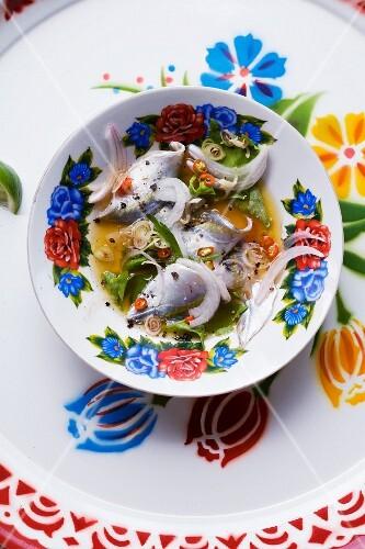 Yam Pla Sot (spicy raw fish salad, Thailand)