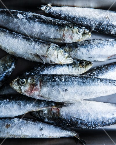 A pile of frozen sardines