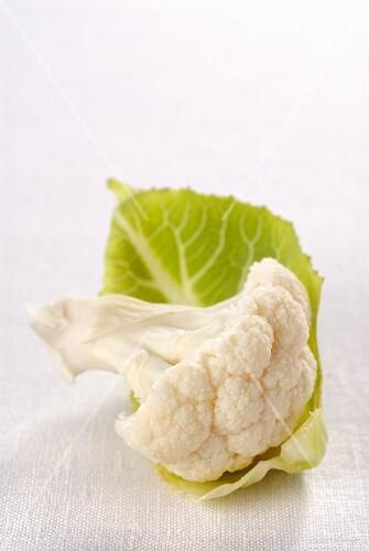A cauliflower floret with a leaf