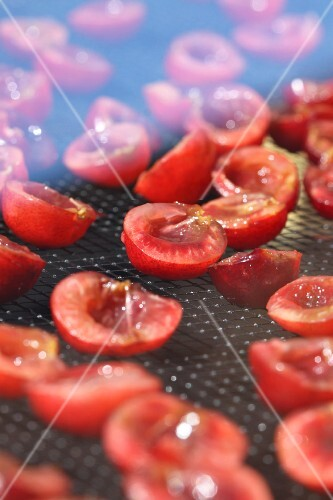 Cherries on a rack in a solar dryer