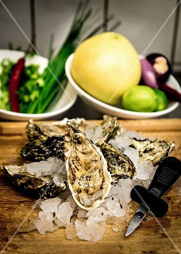Oysters on ice with an oyster knife