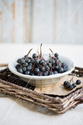 Aronia berries in a white porcelain bowl