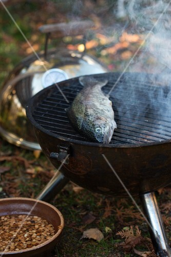 Trout on a barbecue in a garden