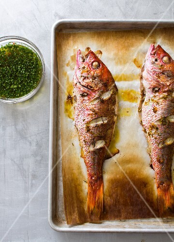 Two whole baked red snappers on a baking tray