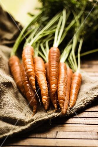 Fresh carrots on a linen cloth