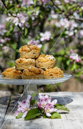 Gluten-free vegan quinoa muffins on a cake stand outside