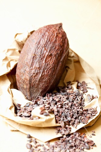 A cocoa fruit and pieces of broken cocoa beans on a piece of paper