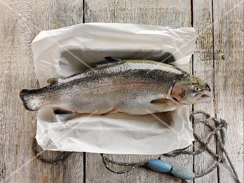 Fresh salmon trout on a piece of parchment paper