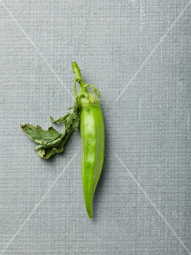 An okra pod with a leaf