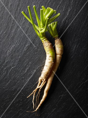 Two white carrots