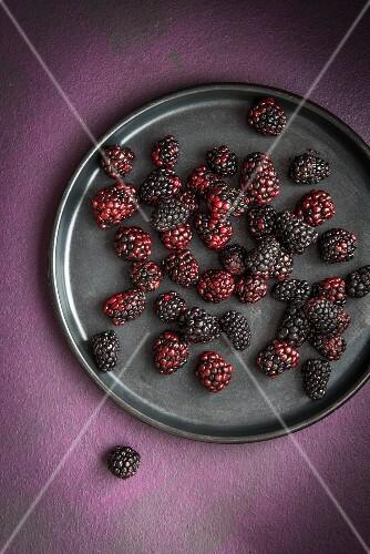 Blackberries on a black plate