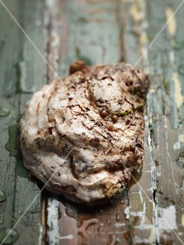 A rappahannock oyster