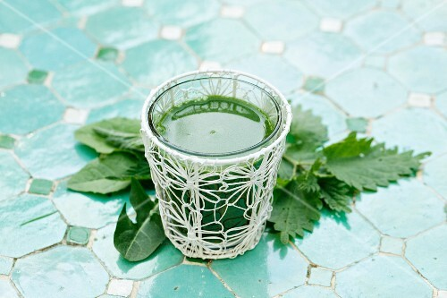 A green smoothie with stinging nettles and dandelion