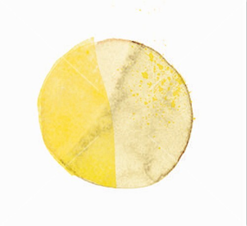 A circle in two shades of yellow (illustration)