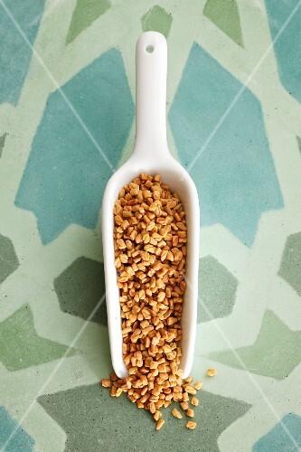 Fenugreek seeds on a small scoop
