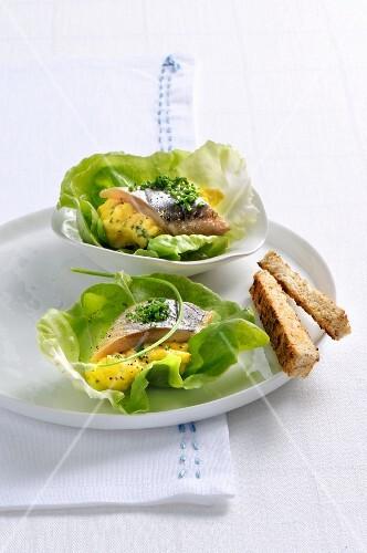 Herring with scrambled egg on lettuce leaves