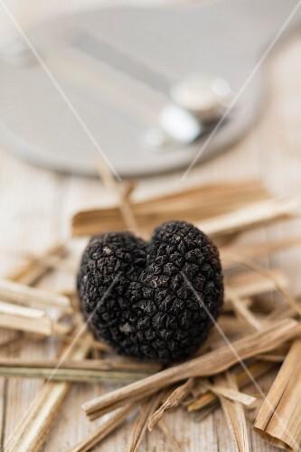 A fresh summer truffle