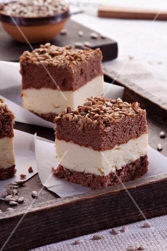 Chocolate cheesecake with sunflower seeds