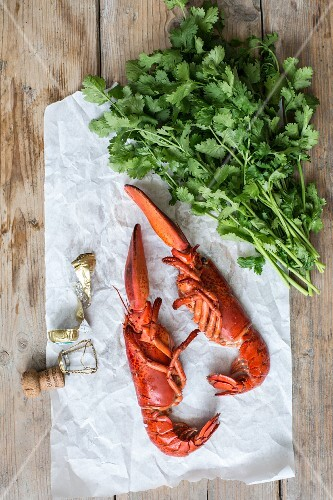 Cooked half lobster, fresh coriander and a champagne cork