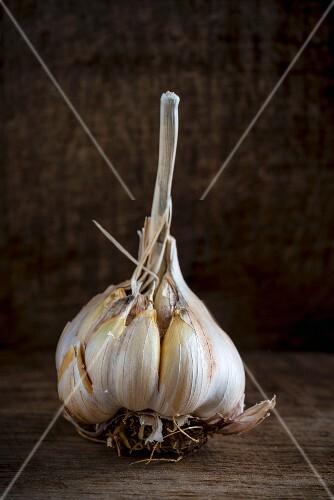 A garlic bulb on a wooden board