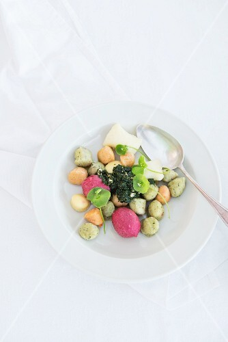Mixed gnocchi with rocket pesto and purslane on a porcelain plate