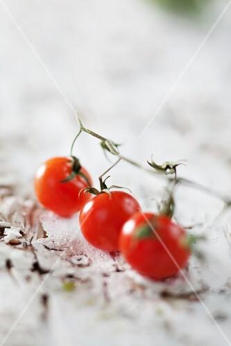 Three cherry tomatoes on a vine