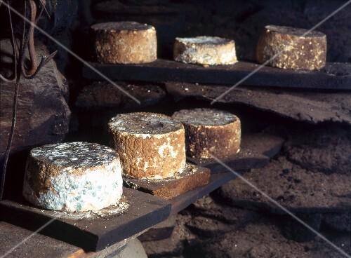 Smoked Toma cheese, Italy