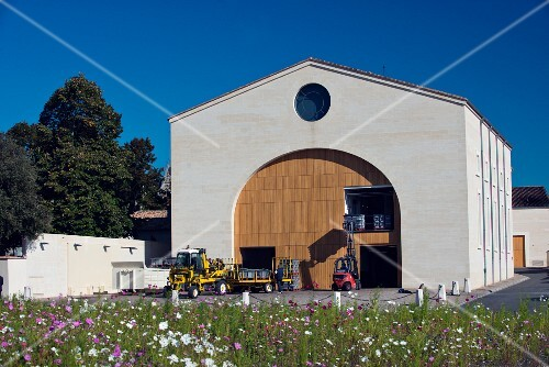 Grapes being delivered by forklift truck at Cuvier Mouton-Rothschild