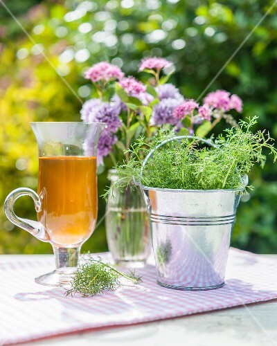 Chamomile in a tin bucket, tea and flowers on a garden table