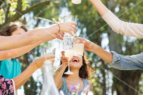 Friends raising glasses at a picnic in a park