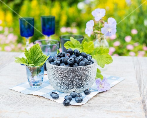 Fresh blueberries in a glass bowl on a garden table