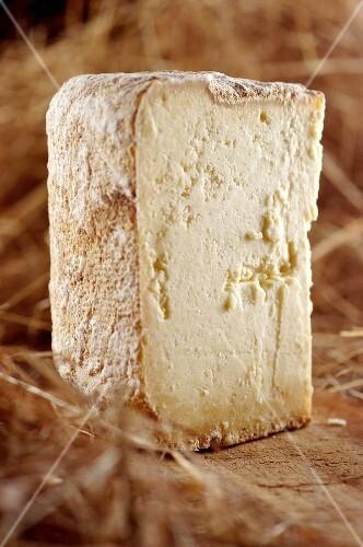 Escarun (hard cheese from Piedmont, Italy)