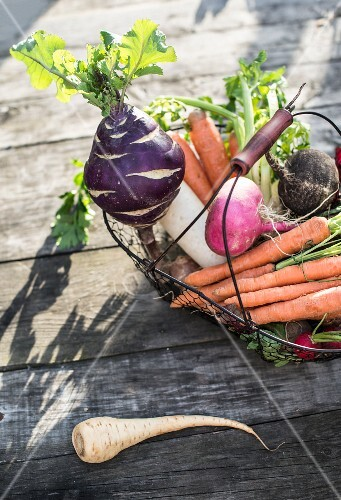 Fresh root vegetables in a wire basket