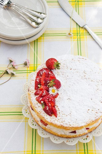 Margherita cake with strawberries, cream and daisies