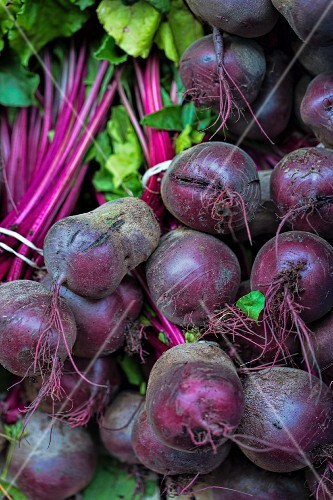 Fresh Beets in Bunches at the Grocery Store