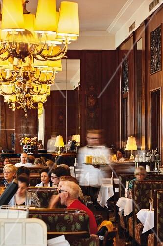 Viennese coffee houses, Café Landtmann, Vienna
