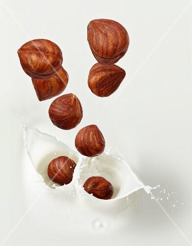 Hazelnuts falling into hazelnut milk