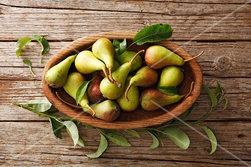 Wild pears in an oval wooden bowl