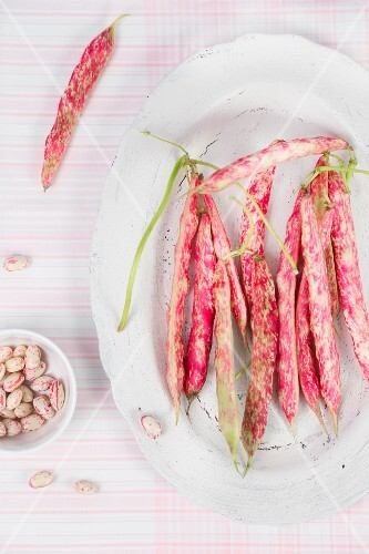 Borlotti beans and pods