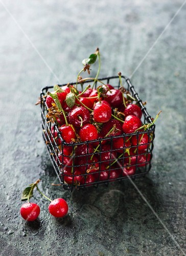 Sour cherries in a small wire basket
