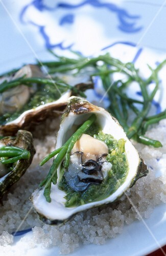 Oysters with seaweed on a bed of salt