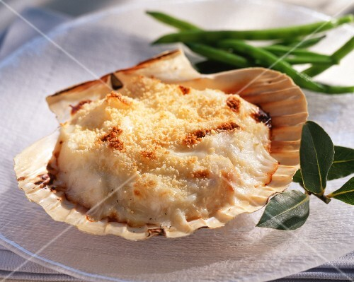 Gratinated scallops
