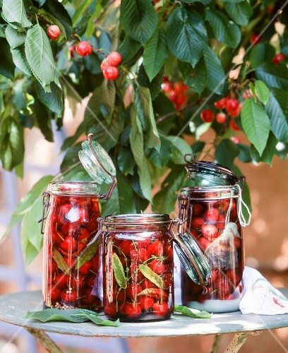 Cherries in preserving jars on a table outside