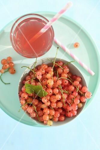 Redcurrants and pink lemonade