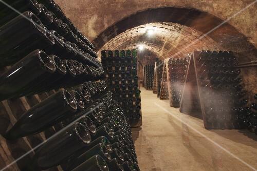 The cava wine cellar of the Sumarroca winery in El Penedes, Spain