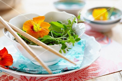 Vegetable stock with pea sprouts and watercress